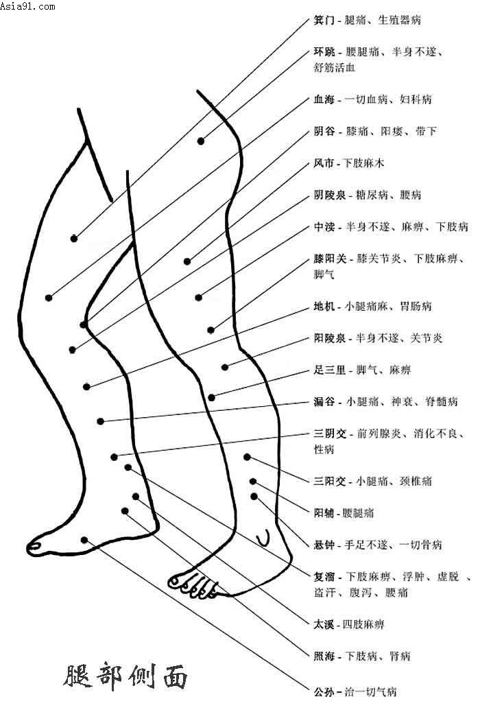 小腿痣的位置与命运图解